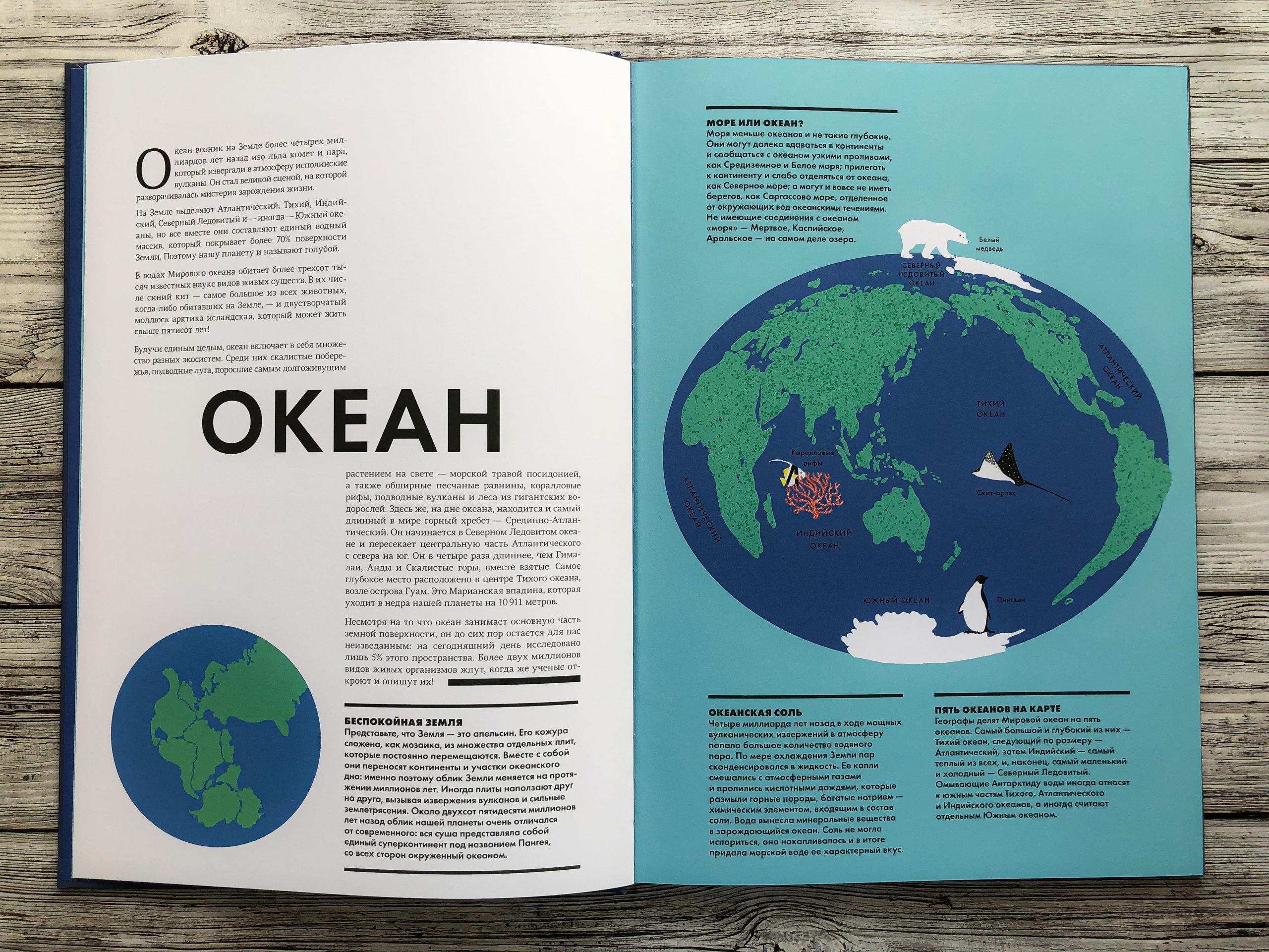 Нереально красивая книга Океан для захватывающих уроков естествознания 5