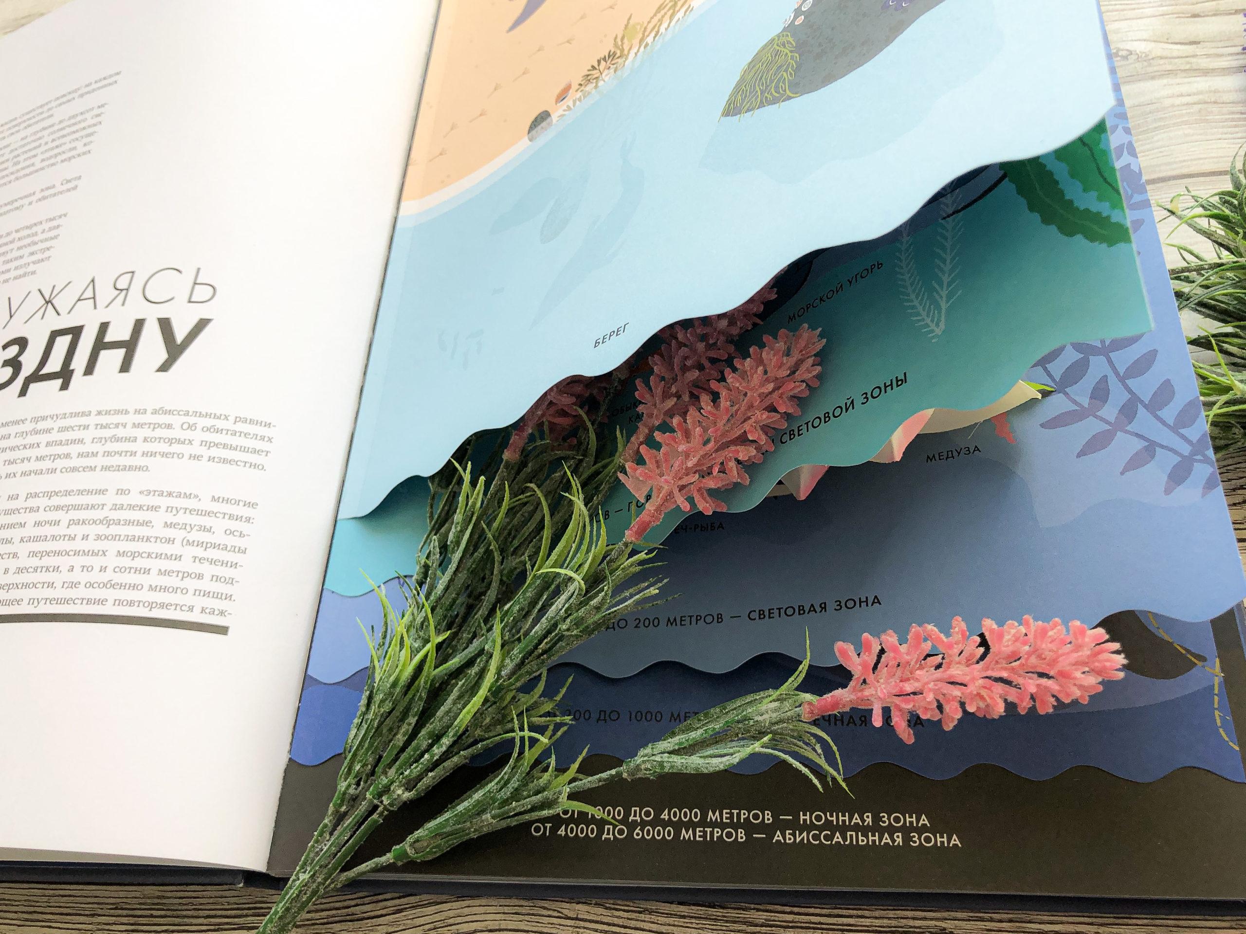 Нереально красивая книга Океан для захватывающих уроков естествознания 7
