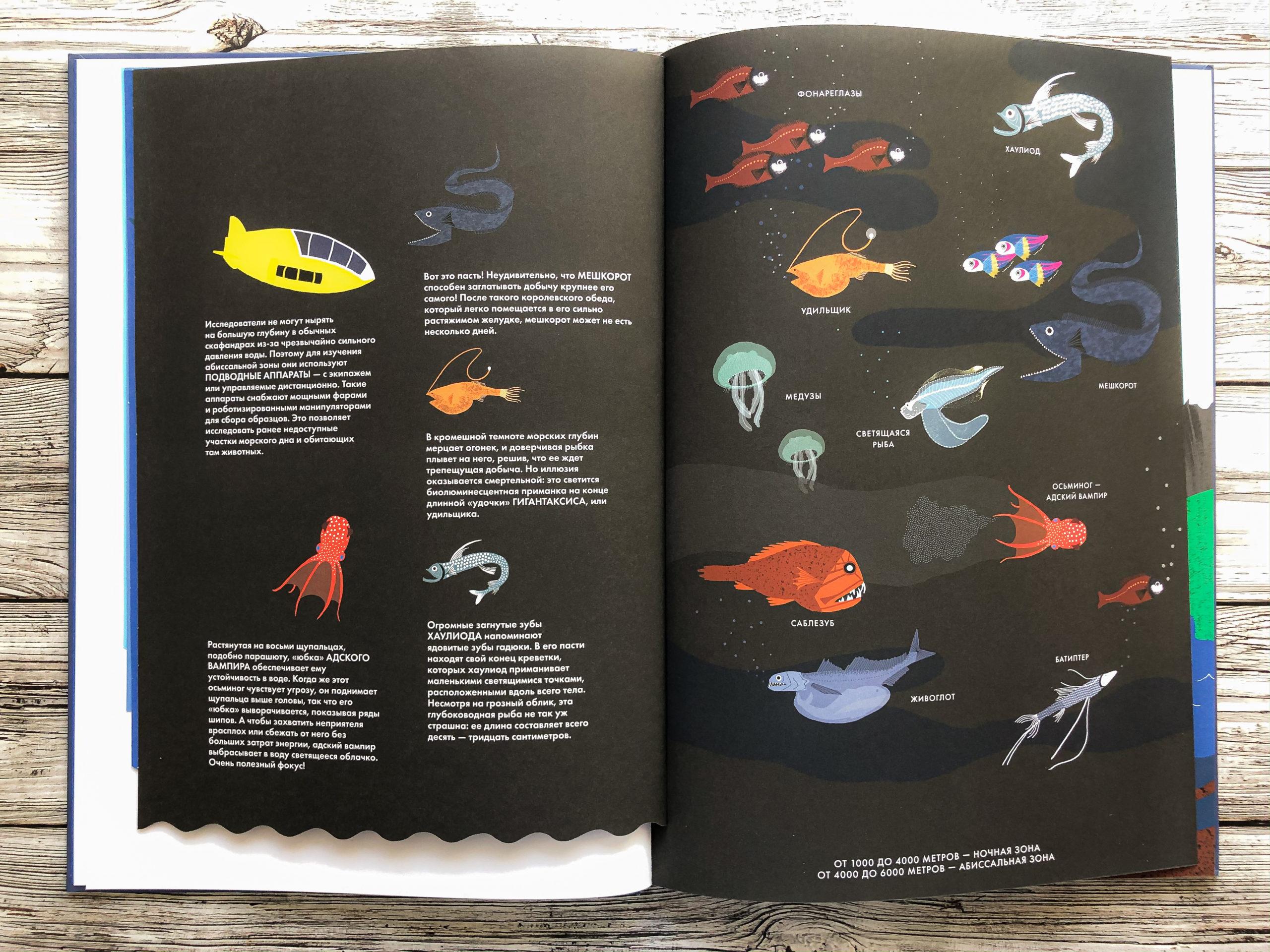Нереально красивая книга Океан для захватывающих уроков естествознания 8