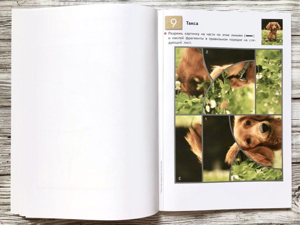 Тетрадь KUMON Пазлы-аппликации - Методика занятий по каждой странице 10