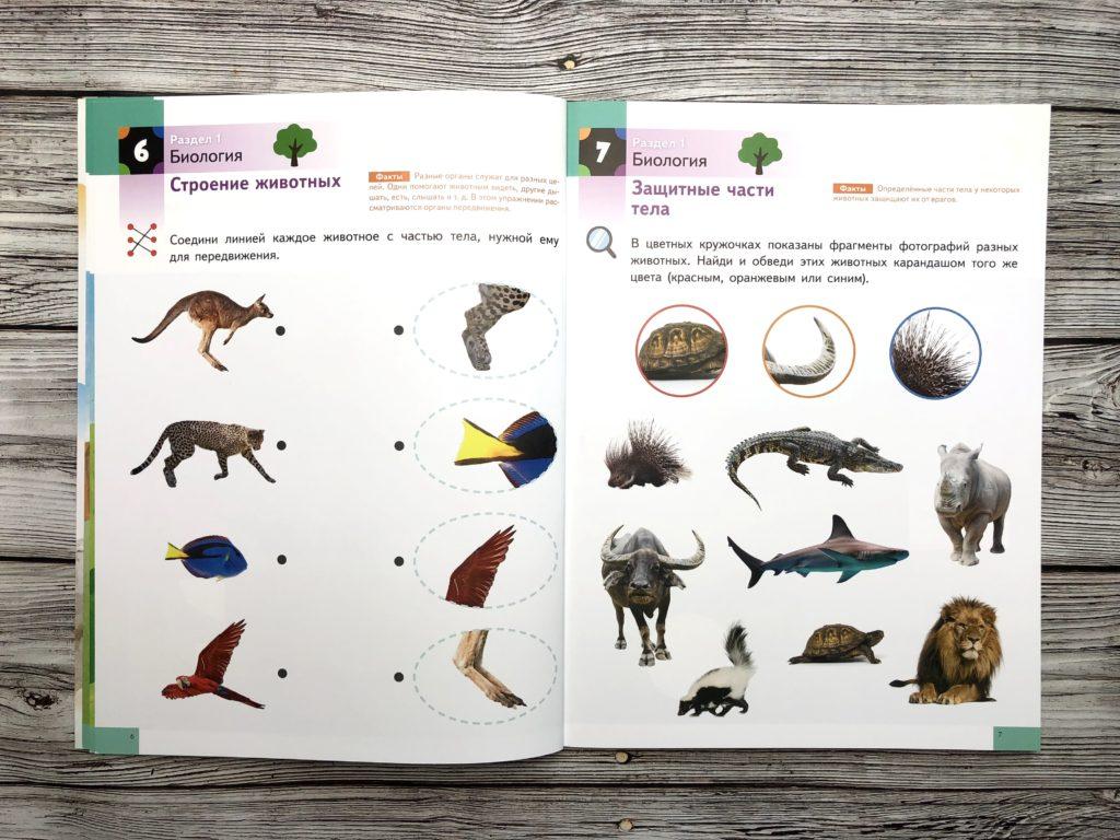 Тетрадь KUMON Наука - Изучаем естествознание с малышом 3