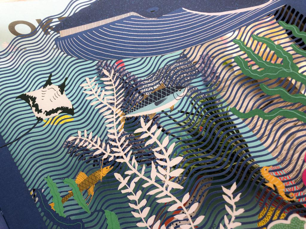 Нереально красивая книга Океан для захватывающих уроков естествознания 4
