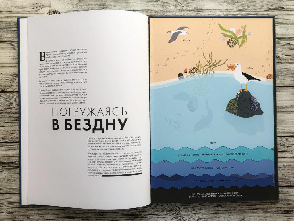 Нереально красивая книга Океан для захватывающих уроков естествознания 6