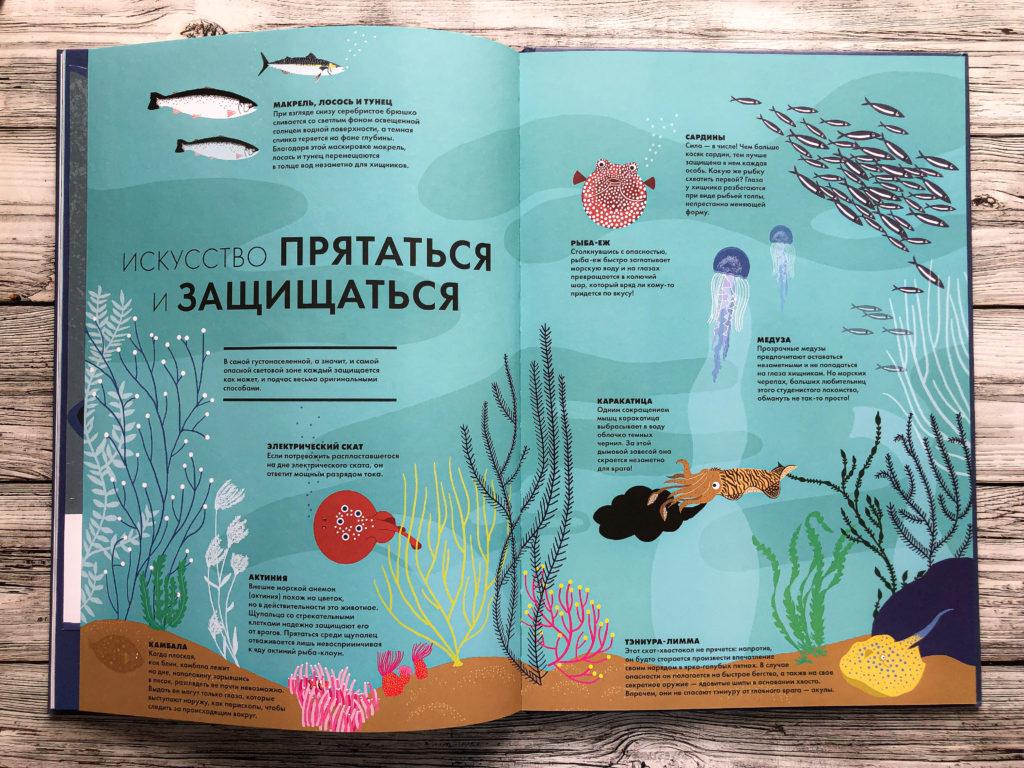 Нереально красивая книга Океан для захватывающих уроков естествознания 14