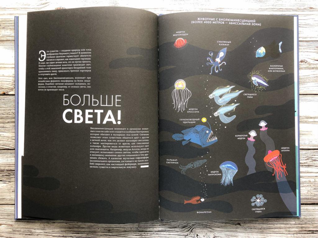 Нереально красивая книга Океан для захватывающих уроков естествознания 17
